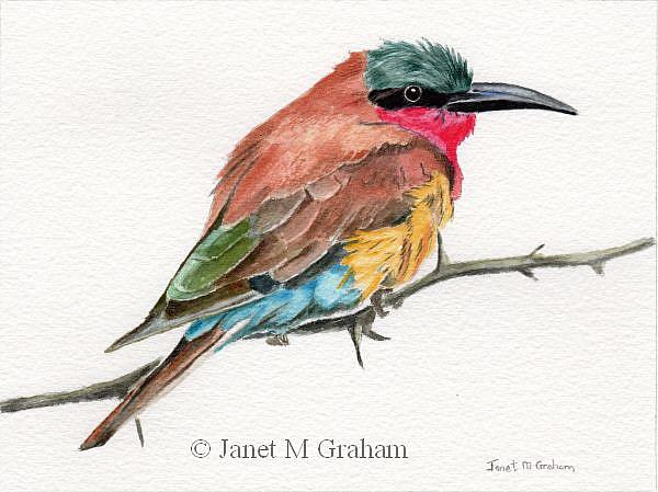 Art: Carmine Bee - Eater by Artist Janet M Graham