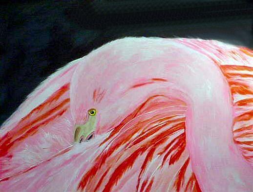 Art: Flamingo by Artist Dia Spriggs
