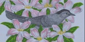 Detail Image for art Catbird Seat (SOLD)