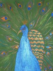 Art: Peacock by Artist Kim Wyatt