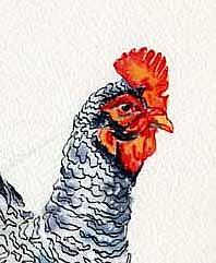 Detail Image for art Roosters, Mr & Mrs