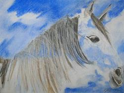 Art: Cloud Horse by Artist Vic  McG