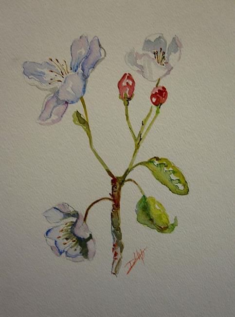 Art: Crabapple Flowers by Artist Delilah Smith