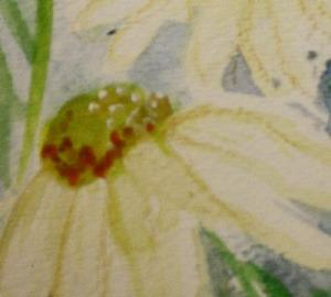 Detail Image for art Daisy Field SOLD