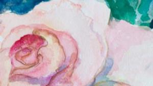 Detail Image for art Pink Rose