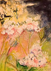 Art: Queen Anns Lace No 2 by Artist Delilah Smith
