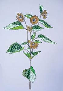 Detail Image for art Full Sunflower Digital Mosaic