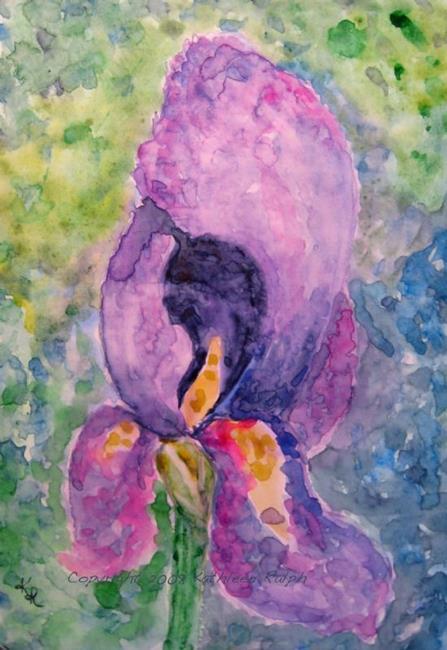 Art: Iris by Artist Kathleen Ralph