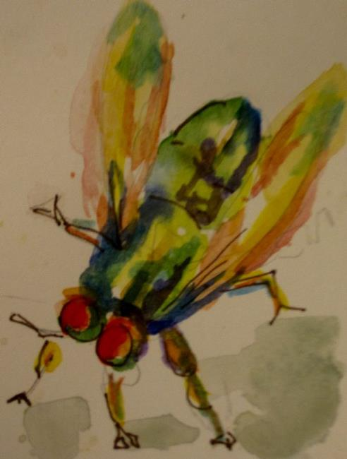 Art: Fly Aceo by Artist Delilah Smith