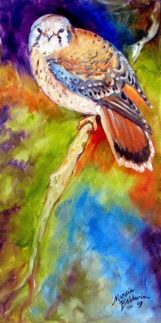 Art: RED TAIL HAWK STUDY by Artist Marcia Baldwin