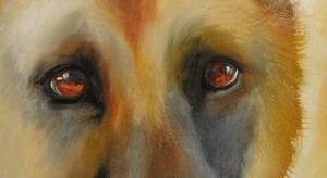 Detail Image for art GERMAN SHEPHERD STUDY