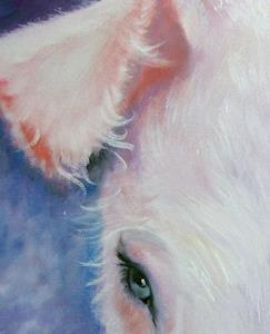 Detail Image for art HAIRY LITTLE PIG 2