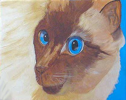 Art: Siamese Cat Face by Artist Dia Spriggs