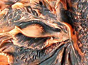 Detail Image for art Greenwoman Sculpture