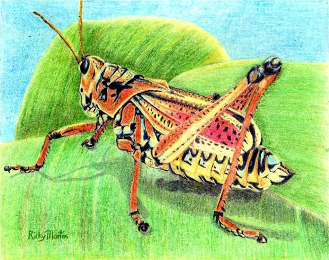 Art: Grasshopper by Artist Ulrike 'Ricky' Martin
