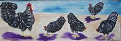 Art: Barred Rock Chickens by Artist Nancy Denommee