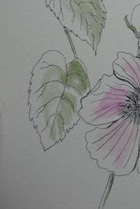 Detail Image for art dogwood