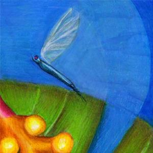 Detail Image for art FROGGIE Fantastic