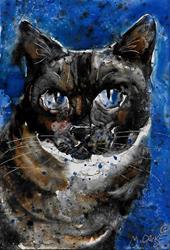 Art: blue siamese.jpg by Artist Melinda Dalke
