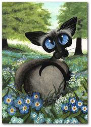 Art: Siamese Forget Me Not by Artist AmyLyn Bihrle