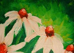 Art: WHITE CONE FLOWERS MINIATURE DOLLHOUSE OIL PAINTING ACEO by Artist Cyra R. Cancel