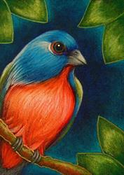 Art: PAINTED BUNTING BIRD CRACKLED PAINTING ACEO by Artist Cyra R. Cancel