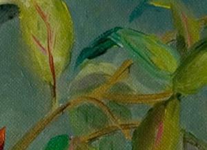 Detail Image for art Fuchsia