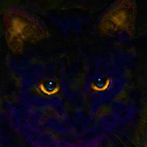 Detail Image for art T'gre Noir
