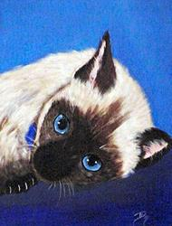 Art: Siamese Cat Portrait by Artist Dia Spriggs