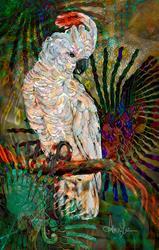 Art: Luminous Pearl Fratalized Cockatiel by Artist Alma Lee