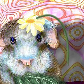 Detail Image for art Herbie Hamster