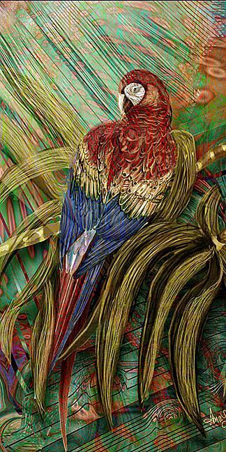 Art: Red Maccaw by Artist Alma Lee