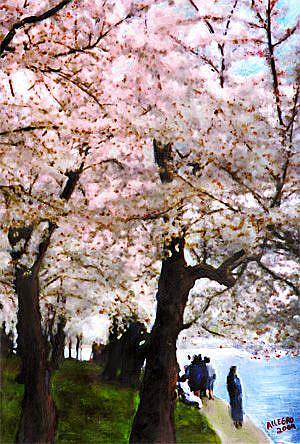 Art: Stroll Along The Cherry Blossoms by Artist Anthony Allegro