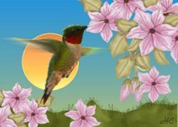 Art: Hummingbird by Artist Hannah Clements