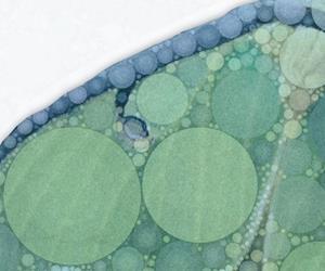 Detail Image for art Luna Rising