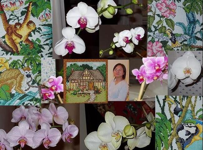 Art: Susan's Orchids by Artist Kathabela Wilson