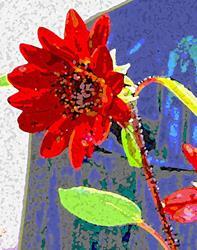 Art: Red petal sunflower by Artist Joan Hall Johnston