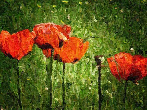 Art: Poppies by Artist Carolyn Schiffhouer
