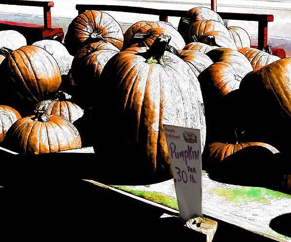 Art: Pumpkins by the Pound by Artist Carolyn Schiffhouer