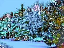 Art: Winter Blues by Artist Carolyn Schiffhouer