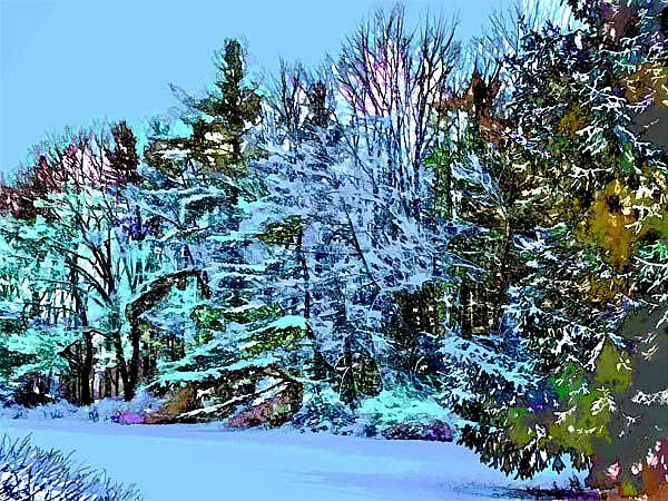 Art: Winter Blues by Artist Carolyn Schiffhouer
