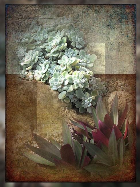 Art: Sedum Green by Artist Carolyn Schiffhouer