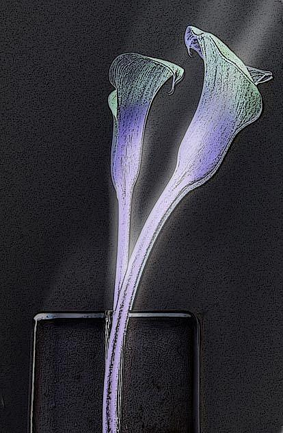 Art: Lilies in Vase by Artist Carolyn Schiffhouer