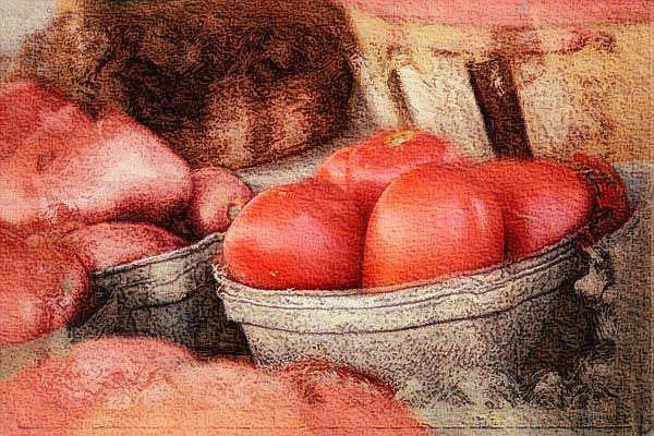 Art: Tomatos Galore by Artist Carolyn Schiffhouer