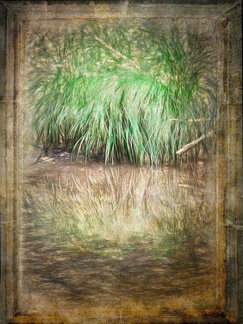 Art: By the Creekside by Artist Carolyn Schiffhouer