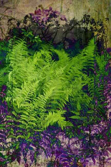 Art: Ferns in Purple and Green by Artist Carolyn Schiffhouer