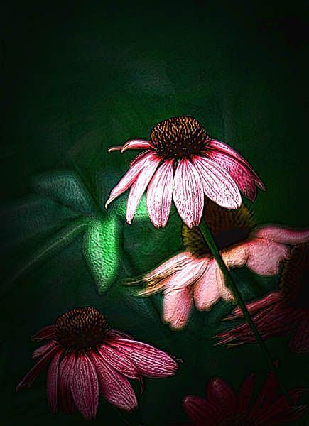 Art: Garden Ballerina by Artist Carolyn Schiffhouer