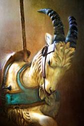Art: Carousel Goat by Artist Carolyn Schiffhouer