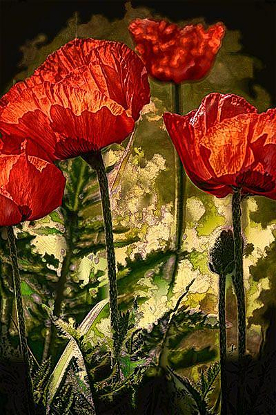 Art: Poppies and Greens by Artist Carolyn Schiffhouer