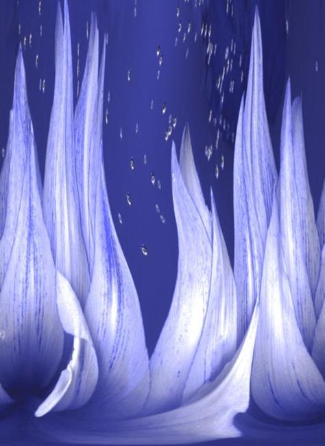 Art: Winter's Eve by Artist Carolyn Schiffhouer